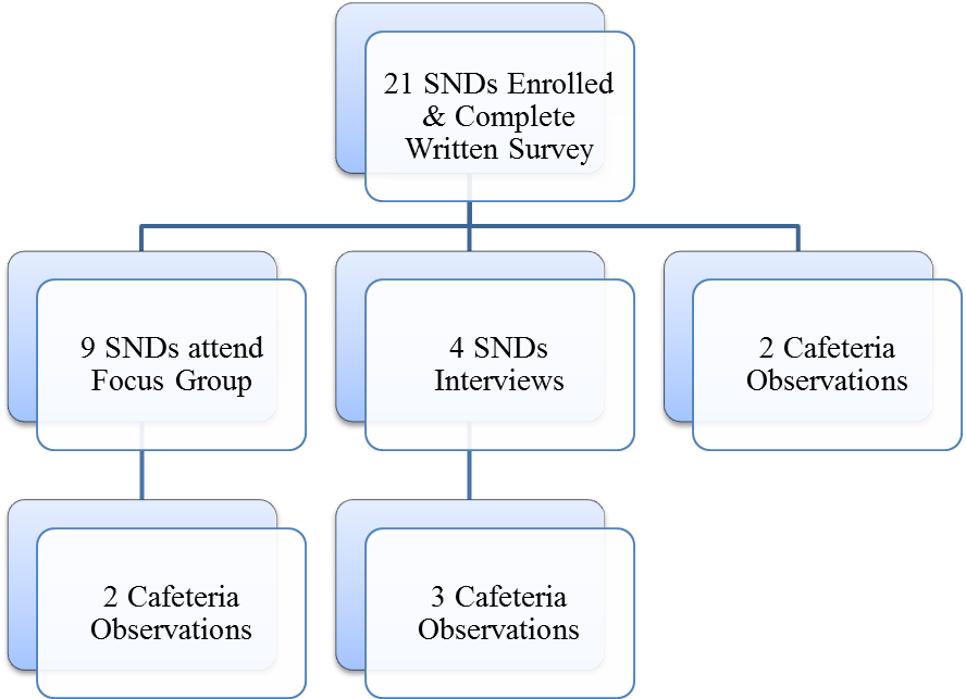 Data Collection Summary from SNDs