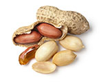 The Big 8 Food Allergen: Peanuts