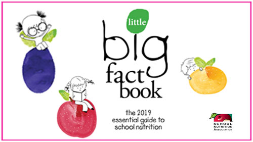 SNA 2019 Little Big Fact Book
